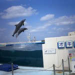 オキちゃん劇場(海洋博公園)